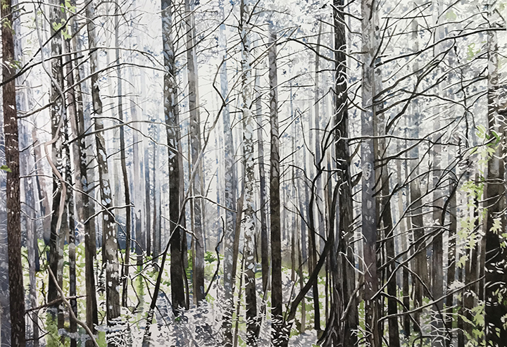 Burnt forest Trees