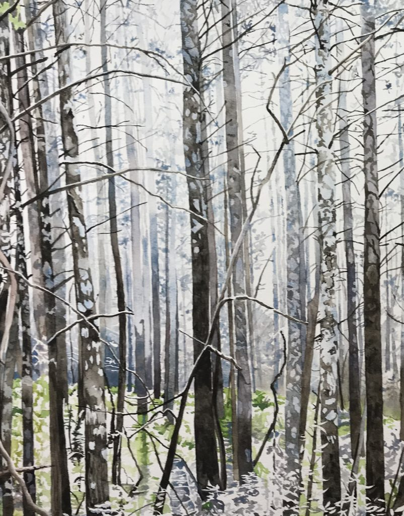 Painting of burnt trees fading into distance