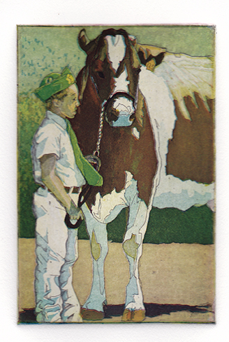 4-H Boy and Cow