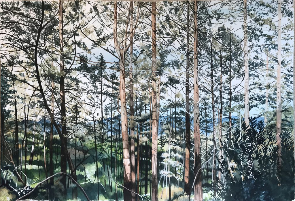Forest of trees