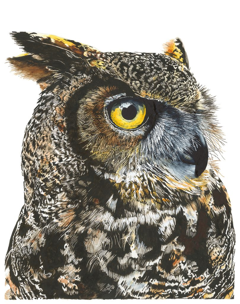 Painting of Great Horned Owl